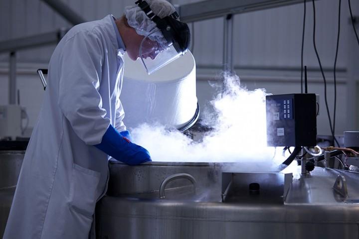 Criogenia vs. Refrigeración: Diferencias y puntos en común